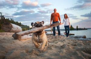 Psí plážová